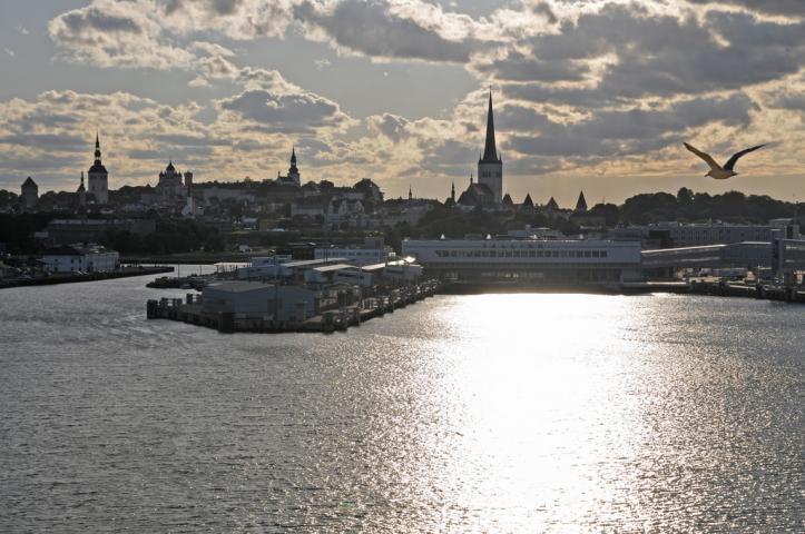 Tallinna Aktiviteetit